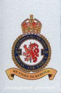 Kovová magnetka - 310. československá stíhací peruť RAF