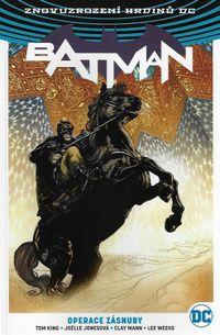 Znovuzrození hrdinů DC Batman 5: Operace zásnuby