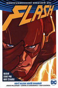 Flash: Když blesk udeří dvakrát