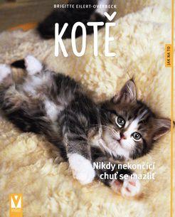 Kotě - Jak na to?