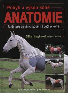 Pohyb a výkon koně - Anatomie